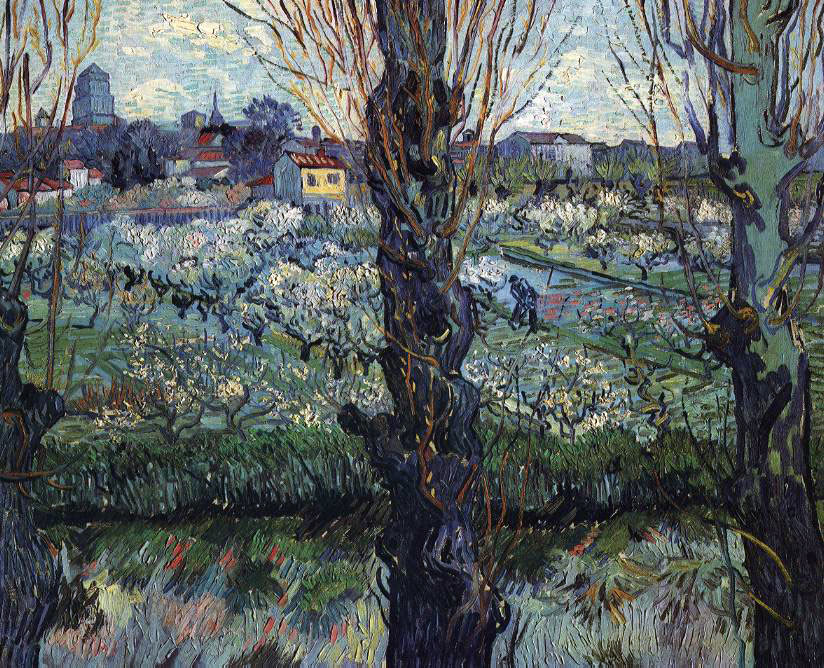van Gogh's Orchard In Bloom With Poplars