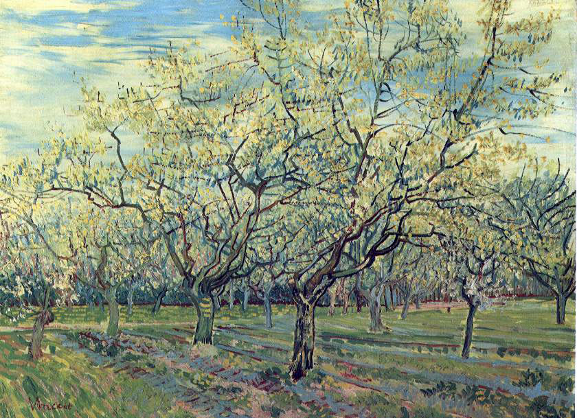 van Gogh's Orchard With Blossoming Plum Trees