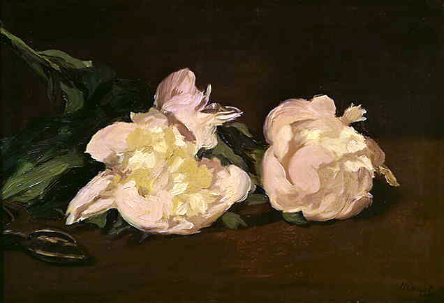 Manet's Branch of White Peonies & Pruning Shears